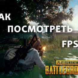 Как посмотреть FPS в Playerunknown's Battlegrounds?